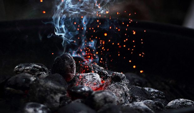 Activated Charcoal – The Winning Toxin Trap